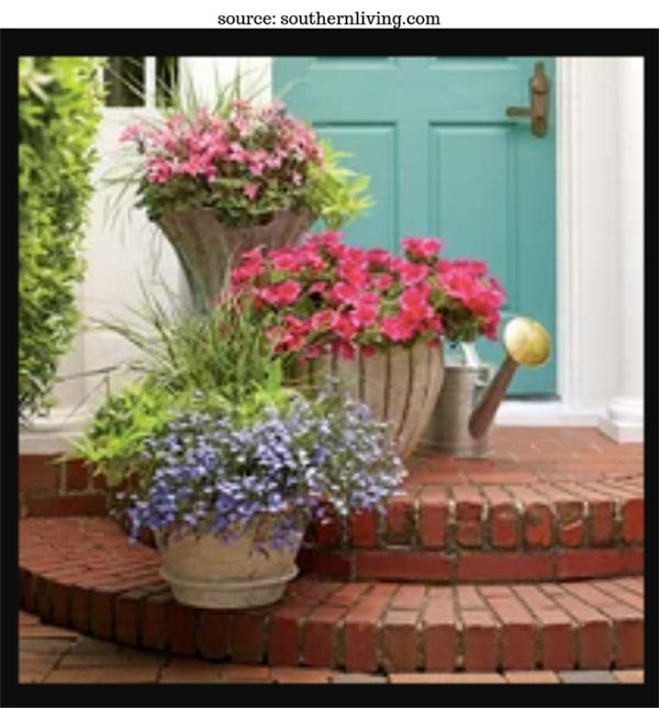 How to create a gorgeous container garden to accent your home's entrance