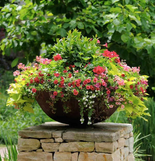 A Stunning Container Garden Is the Perfect Accent To Your Home's Entrance